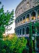Quadro Collossium in Rome, Italy