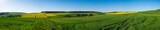 Panorama der Taunusslandschaft im Frühsommer - 204422819