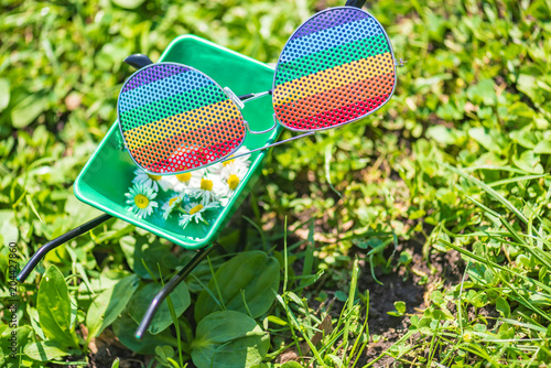 Rainbow glasses and small wheelbarrow with flowers heads.