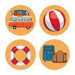 Set of summer elements in round symbols vector illustration graphic design