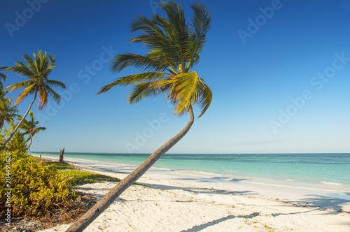 Fotobehang Zanzibar White sand tropical beach with palm trees on north west coast of Zanzibar island, Tanzania.