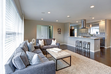 Open concept living room with lots of light.