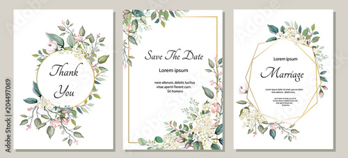 Set of card with flower, leaves. Wedding ornament concept. Floral poster, invite. Vector decorative greeting card or invitation design background - 204497069