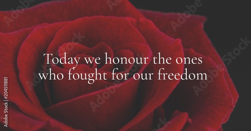 memorial day message with rose background