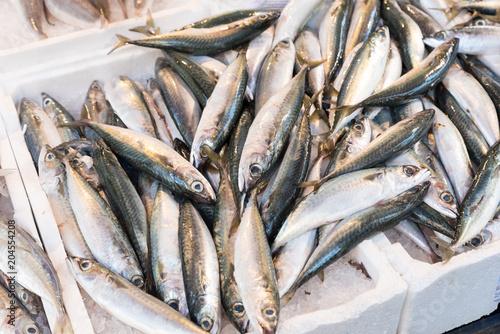 Plexiglas Napels Fresh fish at the Naples market