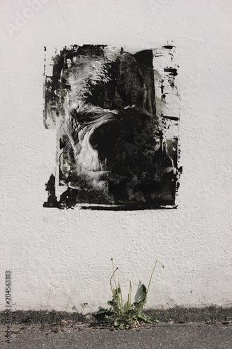 Aluminium Graffiti Graffitiwand Graffiti Gorilla Affe Gesicht Streetart
