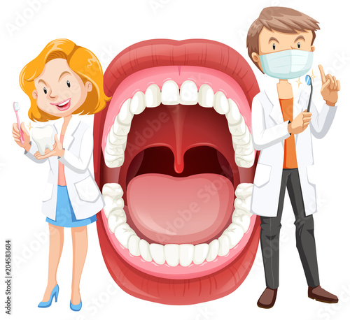 Fototapeta Human Mouth Anatomy with Dentist