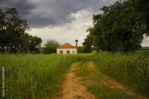 Country house surrounded by trees and vegetation. Alentejo Portugal