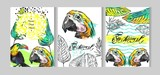 Tropical jungle template cards set with parrot,toucan birds and tropical palm leaf on white.Hand drawn abstract texture summer illustration - 204633278