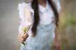 花を差し出す女の子