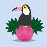 summer time tropical toucan bird flower vector illustration - 204676864