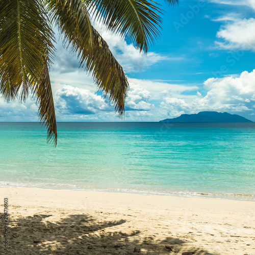 Fotobehang Tropical strand Tropical island beach. Perfect vacation background.