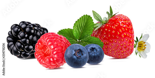 Berries collection. Raspberry,strawberry, blueberry, blackberry  isolated on white. - 204718206