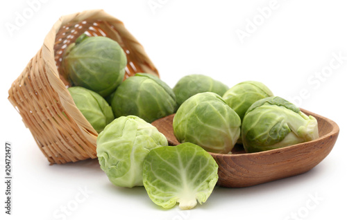 Canvas Brussel Rosenkohl or Brussels sprouts