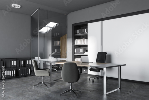 Gray and white modern office interior