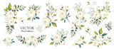 Set of floral branch. Flower white rose, green leaves. Wedding concept. Floral poster, invite. Vector arrangements for greeting card or invitation design background - 204725087