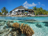 Hut on the sea shore with coral and fish underwater, split view above and below water surface, Rangiroa, Tuamotus, Pacific ocean, French Polynesia - 204728261
