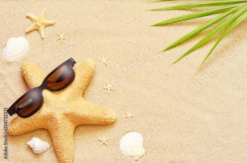 Fototapeta Funny starfish and seashells on the summer beach with sand
