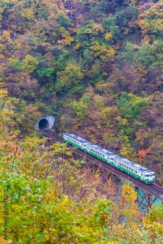 Plexiglas Spoorlijn Tadami line at Mishima town , Fukushima in autumn