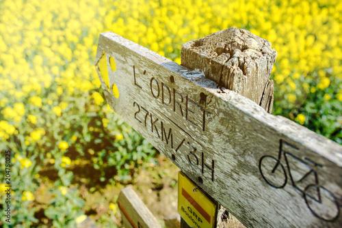 Plexiglas Geel panneau de randonnée