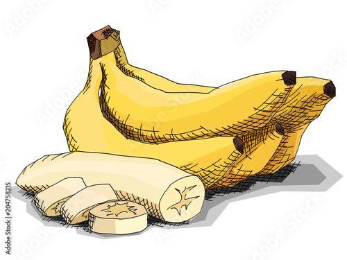Vector Illustration Of Drawing Fruit Bananas Buy Photos Ap