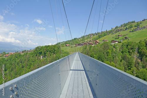 hängebrücke in sigriswil, alpen, schweiz