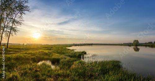 Fotobehang Berkenbos летний вечерний пейзаж на Уральской реке с деревьями на берегу, Россия, июнь