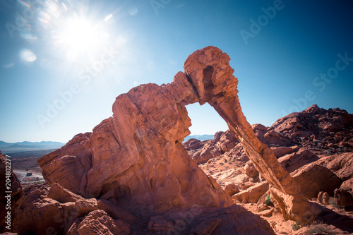 Fototapeta Elephant Rock formation at Valley of Fire State park Nevada