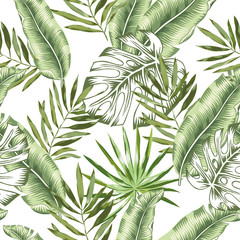 Green banana, monstera palm leaves with white background. Vector seamless pattern. Tropical jungle foliage illustration. Exotic plants greenery. Summer beach floral design. Paradise nature.