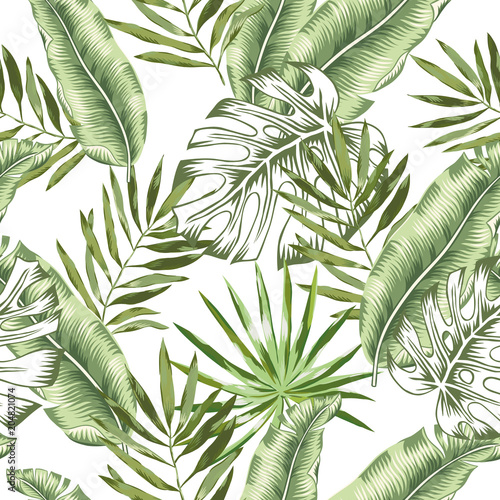 Green banana, monstera palm leaves with white background. Vector seamless pattern. Tropical jungle foliage illustration. Exotic plants greenery. Summer beach floral design. Paradise nature. © ojardin