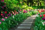 Spring Tulips Flowerbeds