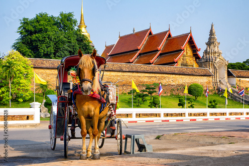 Plexiglas Paarden Horse carriage at Wat Phra That Lampang Luang.