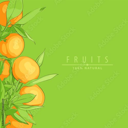 Ripe fresh oranges