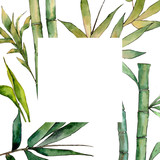 Bamboo tree frame in a watercolor style. Aquarelle wild bamboo tree for background, texture, wrapper pattern, frame or border.
