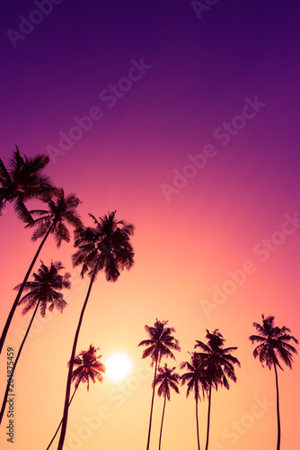 Beautiful colorful tropical sunset with coconut palm trees silhouettes vertical with copy space