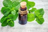 medicinal herbs. Selective focus. - 204904497