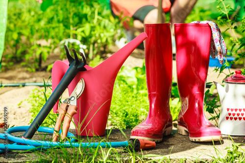 Poster Gardening tools outdoor in garden