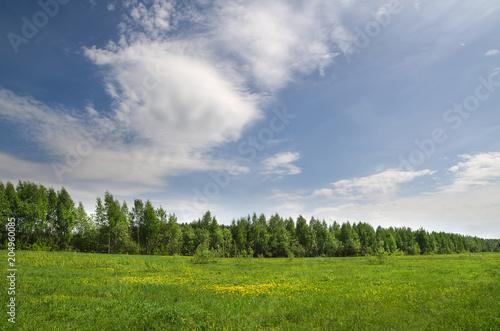 Plexiglas Lente Grove at the edge of the field