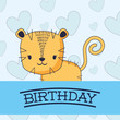 Happy birthday design with cute tiger over blue background, colorful design. vector illustration