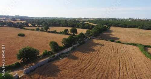 Aerial, roadway in rural countryside
