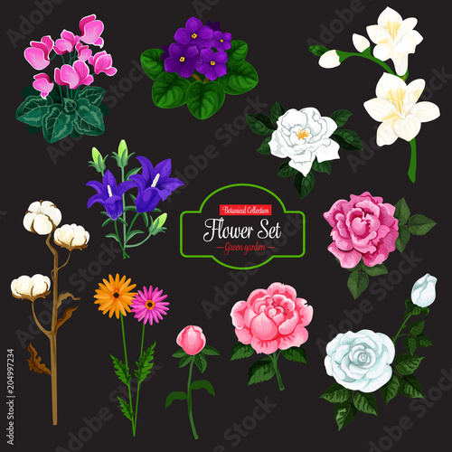 Fridge magnet Flower icon of garden and house flowering plant