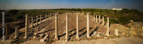 Canvas Cyprus Panoramic aerial view to gymnasium at Salamis ruins, Cyprus