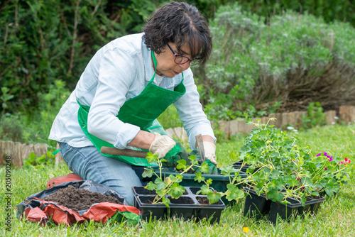 Fridge magnet senior woman potting geranium flowers