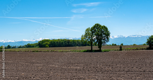 Plexiglas Blauw countryside landscape with Pyrenees mountain range in the background