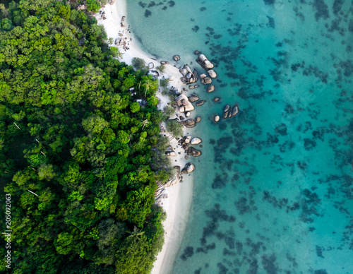 Aluminium Groen blauw aerial view of landscape with rainforest near the rocky beach and turquoise sea