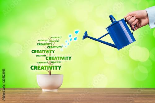 Fototapeta Creativity growth