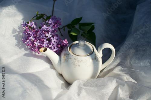biały czajniczek do herbaty w słońcu z kwiatami bzu