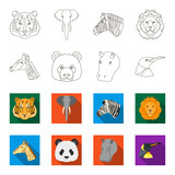 Panda, giraffe, hippopotamus, penguin, Realistic animals set collection icons in outline,flat style vector symbol stock illustration web.