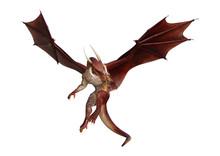 3d Rendering Fairy Tale Dragon  Sticker