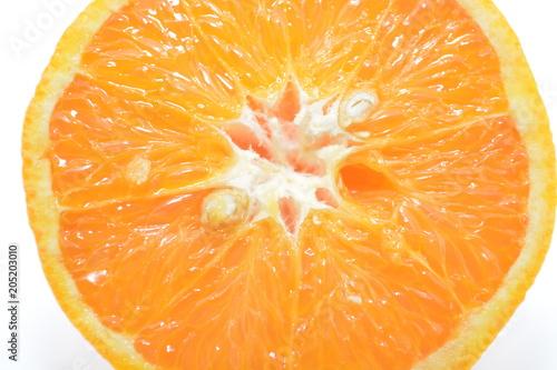 arancia macro